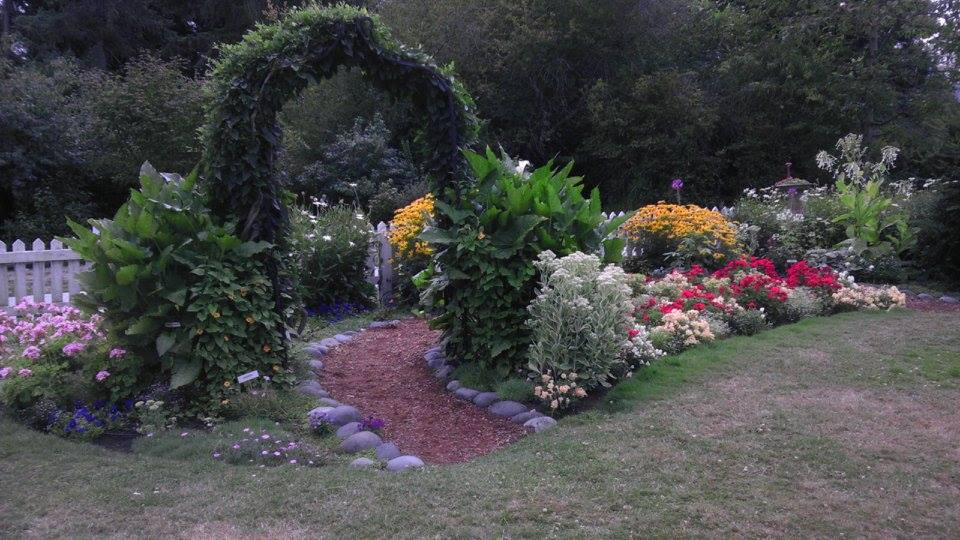 Annual Garden 2hovander