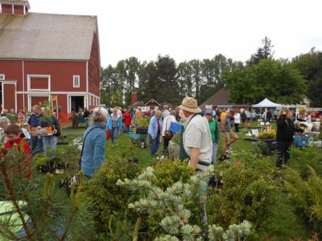 Plant Sale And Barn