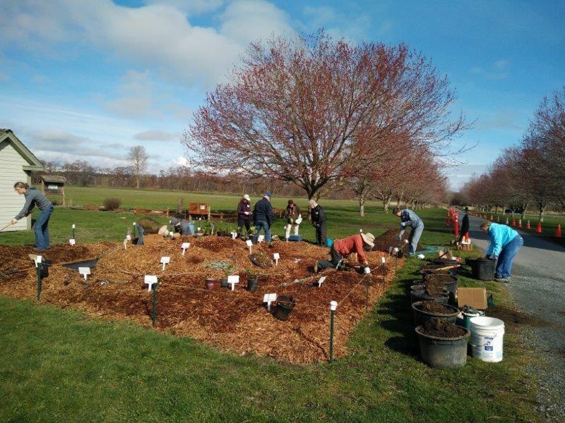 Native Plant Garden Volunteers